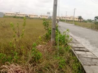 A land measuring 1,000sqm is available for sale