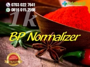 BP Normalizer